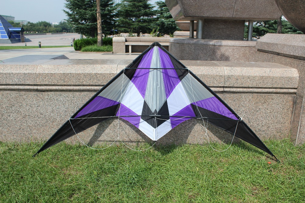 Professional-Kite-utdoor-Fun-Sports-Storm-18-m-Delta-Dual-Line-Stunt-Kite-Power-Kites-Good-Flying-With-Handle-And-Line-4