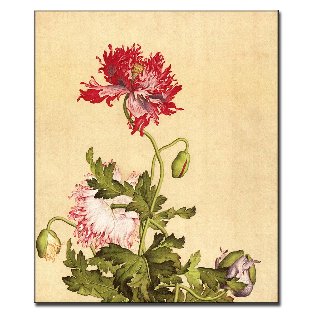 Flower Canvas Prints Classical Oil Painting Picture Printed On ...