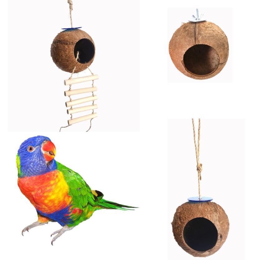 Transer NEW HOT Big Soft  Natural Coconut Shell Bird Nest House Hut Cage Feeder Pet Parrot Hamster Toy New 18Mar27 Кормушка