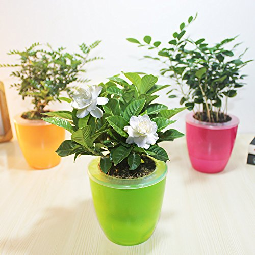 office flower pots. aliexpresscom buy mkono 3pcs self watering pot automatic planter plant flower pots for garden office home decoration table floor use random color from a