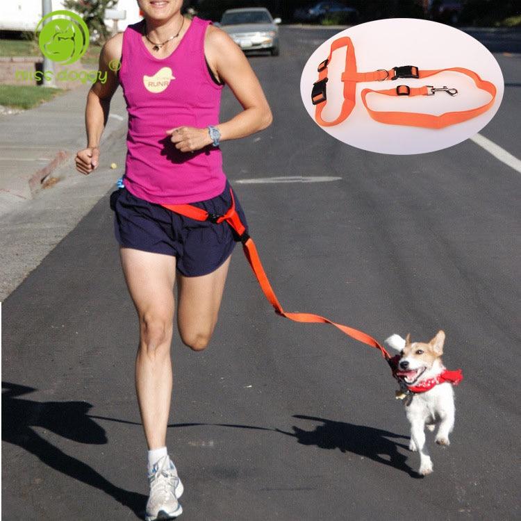 Nylon Dog Leash Χέρια Δωρεάν Pet Pet Lead Walking - Προϊόντα κατοικίδιων ζώων