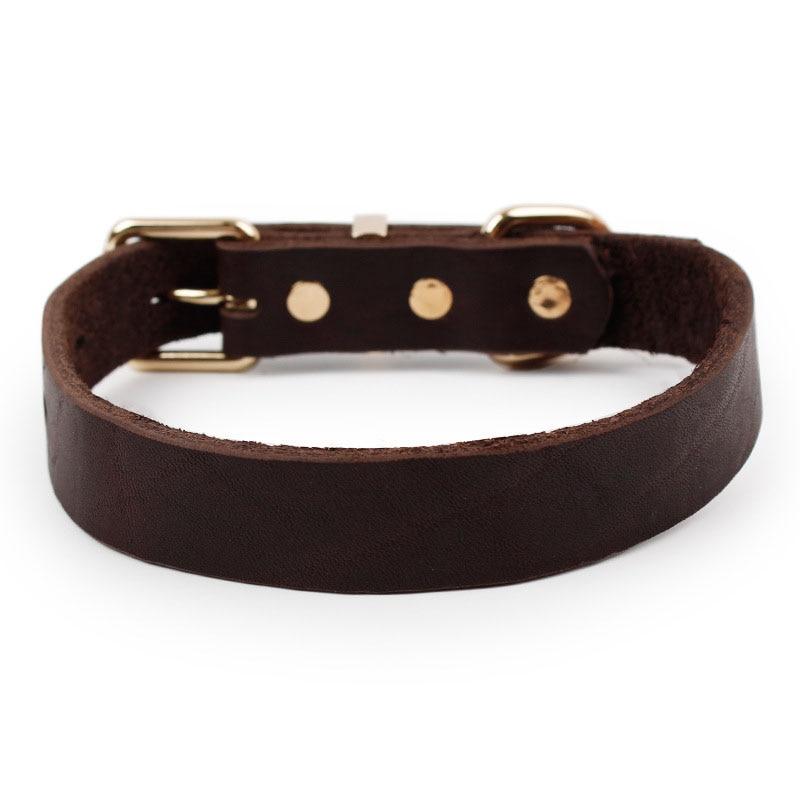 SYDZSW Top Grade Leather Dog Collar Pet Leads Legering Buckle - Pet produkter - Foto 3