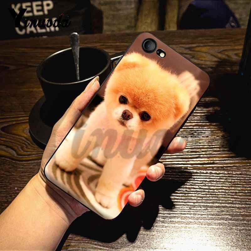 Yinuoda del cane Pomeranian cani Di Lusso Coque Borsette Cassa Del Telefono per il iPhone X 8 7 6 6S Plus X 5 5S SE XS XR11 11pro 11promax