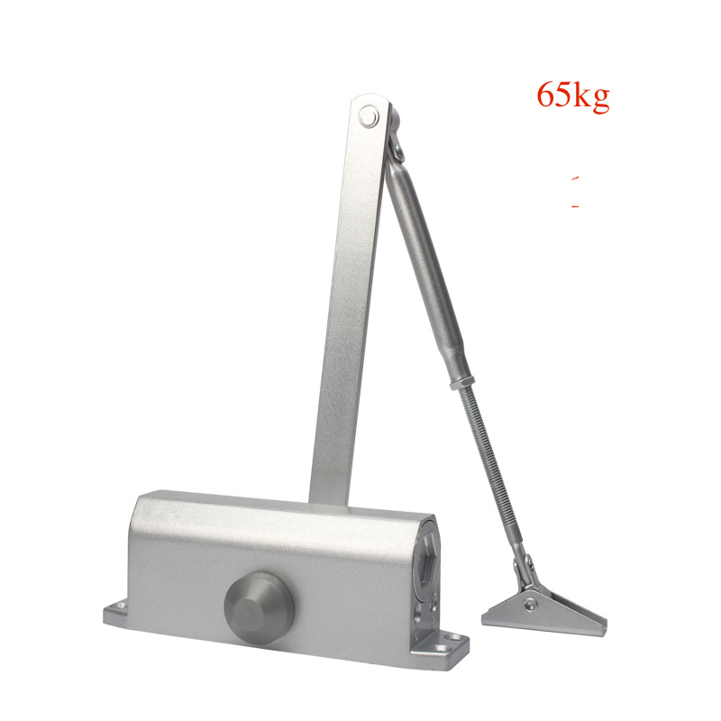 Automatic Door Closers Security System Adjustable Closing Latching Speed Left and Right Hand Doors 20 65Kg