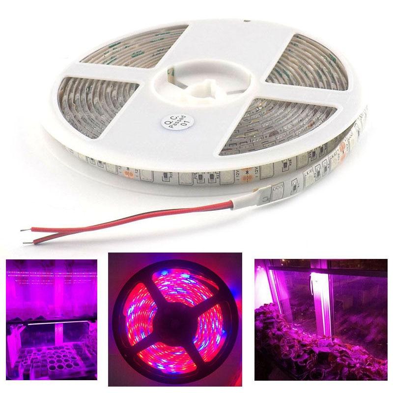 1M 5M LED Plant Grow Light Strip 12V Lighting 5050 Growing Lamp Waterproof For Vegetable Flower Hydroponics Indoor Greenhouse