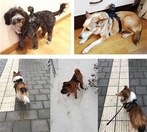 Image 5 - לירות להביא כלב רתם חזה רצועת עבור GoPro גיבור 9 8 7 5 מושב SJCAM SJ4000 M20 Xiaomi יי 4K H9r DJI פעולה מצלמה אבזר