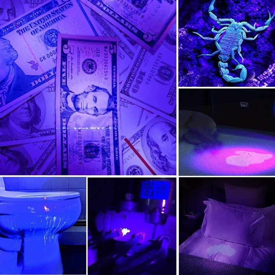 Image 5 - Linterna de LED UV luz ultravioleta con función de Zoom Mini UV luz negra Detector de manchas de orina de mascotas Scorpion HuntingLinternas y antorchas   -