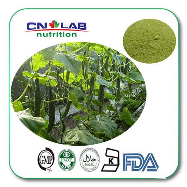 GMP Manufacture Natural Cucumber Extract Powder 1Kg/bag free shipping
