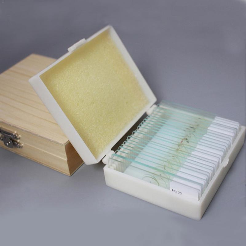 25/50/100PCS Prepared Basic Science Microscope Slides Animal Plants Insects Tissues Biological Specimens Slides With Wooden Box 91pcs professional glass biological microscope prepared slides lab specimens