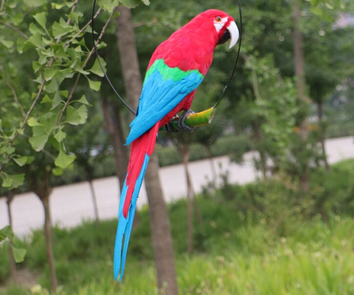 new creative simulation turned parrot model foam&furs big red&blue parrot bird toy gift about 60cm 3021