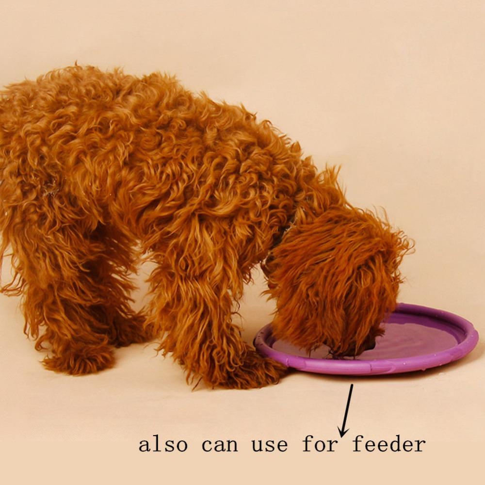 Disco volador interactivo para tu mascota 4