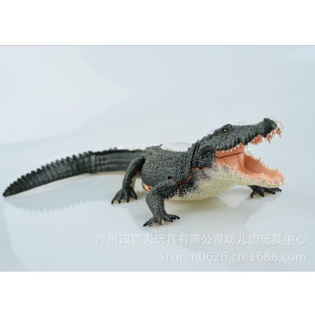 Assembled Animal Anatomy Alligator Model Anime Medical Science ...