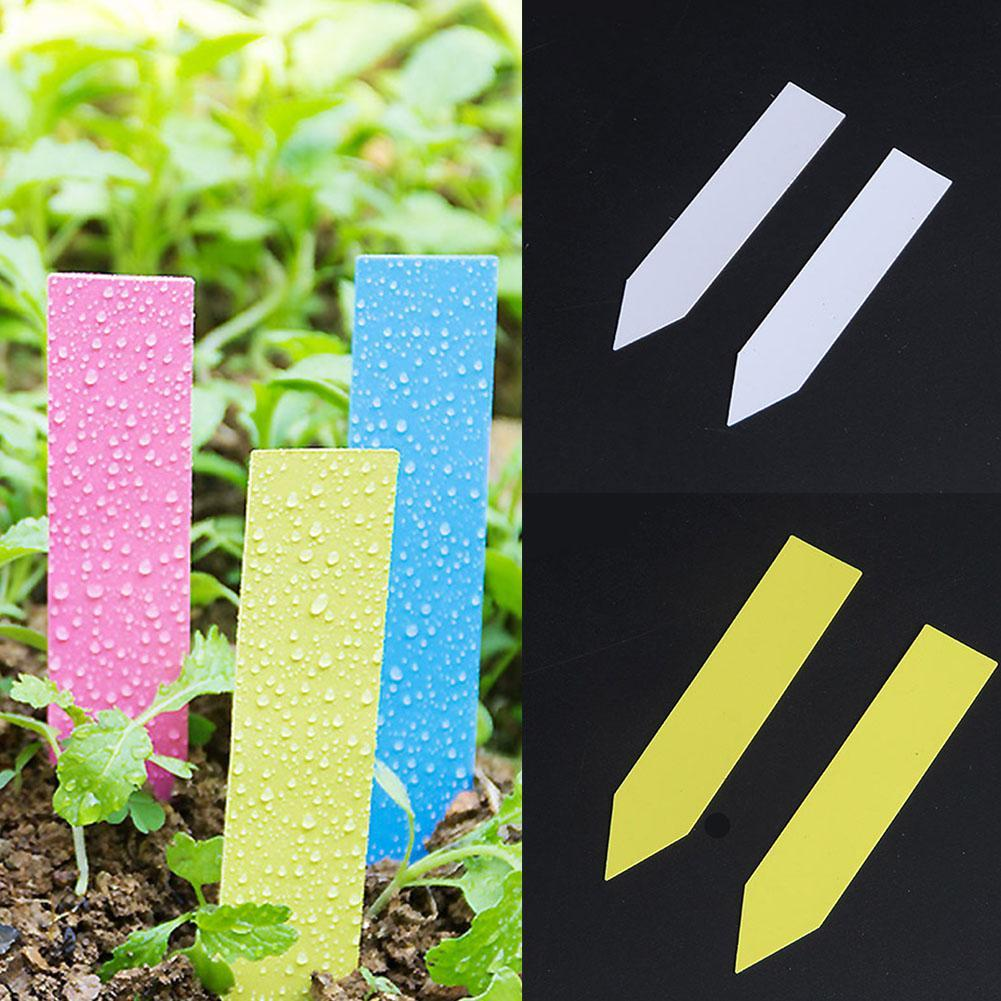 Plants Tag Labels Markers Plastic Stake Tags Yard Court Nursery Seed Label Plastic Tags Sign Classification Tools 100 Pcs