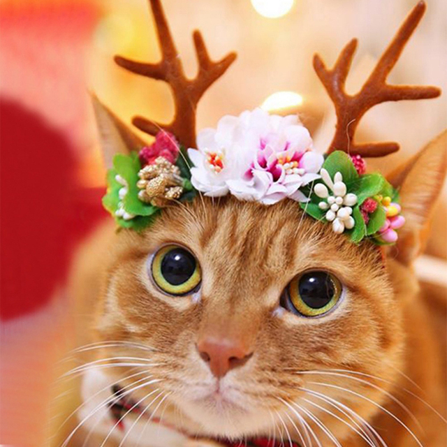 merry christmas cute pet cat dog caps reindeer hat headwear headdress for happy new year pet
