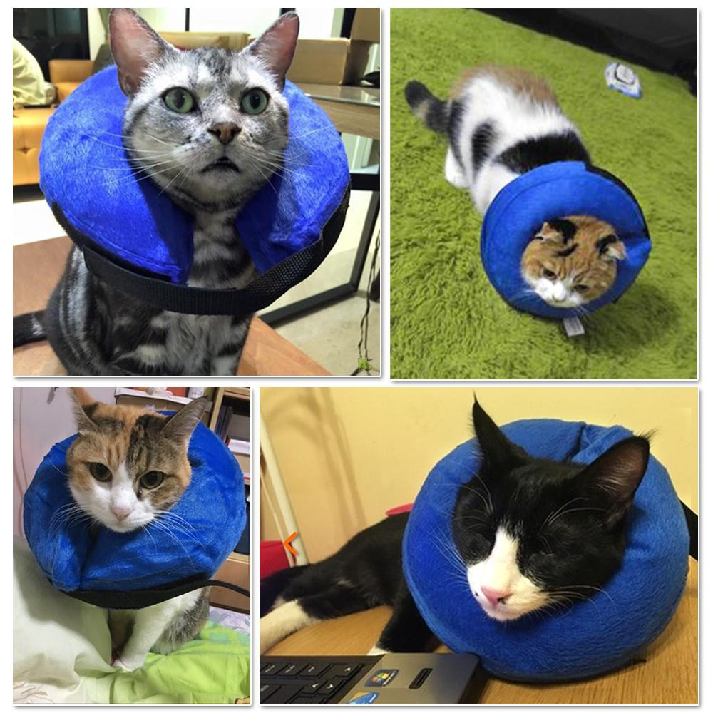 Inflatable-Pet-Collar-Health-Dog-Cat-Vet-Approved-Elizabethan-Wound-Healing-Protection-Medical-Cone-Collar