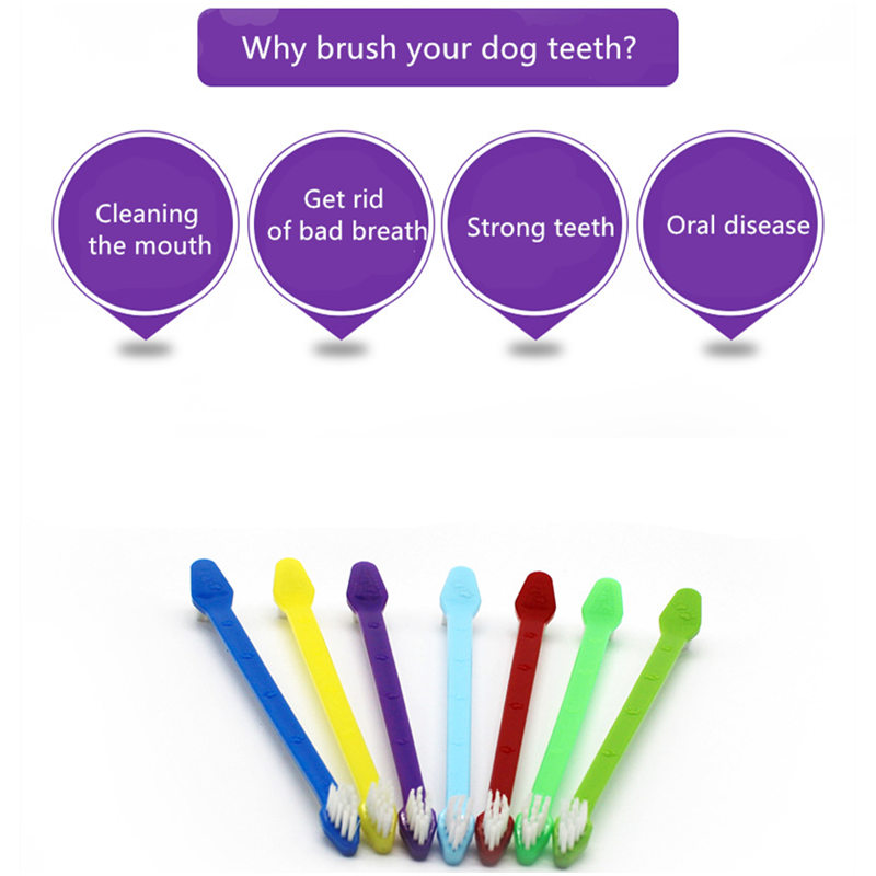 Fashion Pet Cat Dog Tooth Finger Brush Dental Care for Pet Toothbrush Mouth Cleaning Toothbrushes Plastic Cat Brushes in Dog Toys from Home Garden