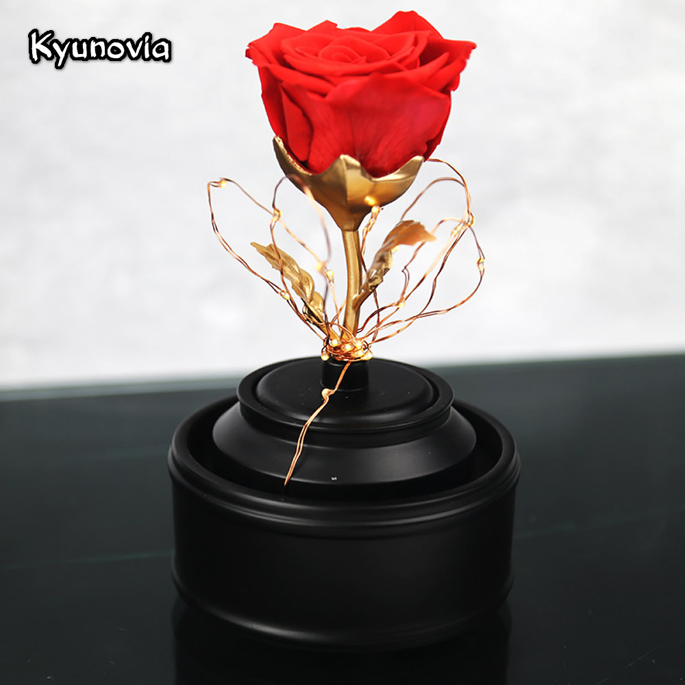Kyunovia fresh preserved real rose flower with led light beauty and kyunovia fresh preserved real rose flower with led light beauty and the beast floral in glass birthday party car decoration ky88 in artificial dried izmirmasajfo
