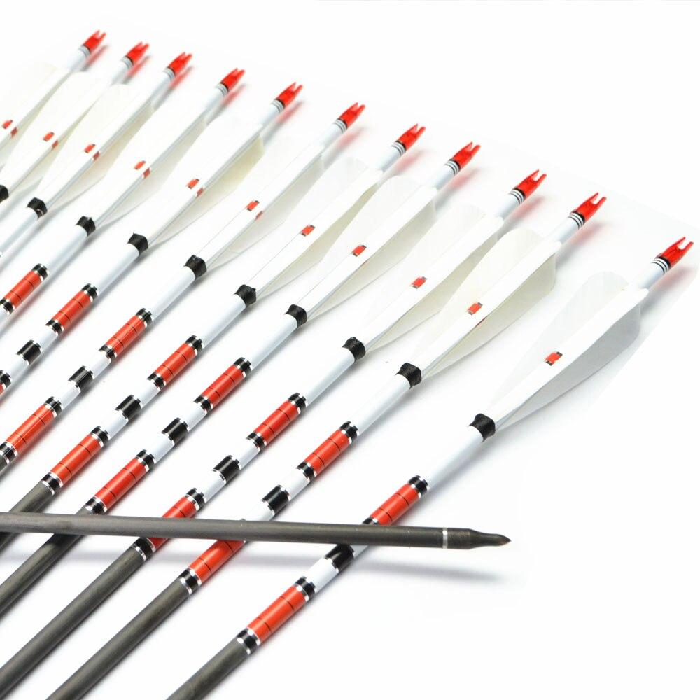 12x Carbon Arrows 400 500 600 wervelkolom met 4 stuks Kalkoenveer - Jacht