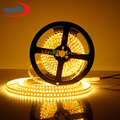 5M Superbright 5mm High Bright 3014 SMD 120leds/M Warm White LED Strip DC12V #NP