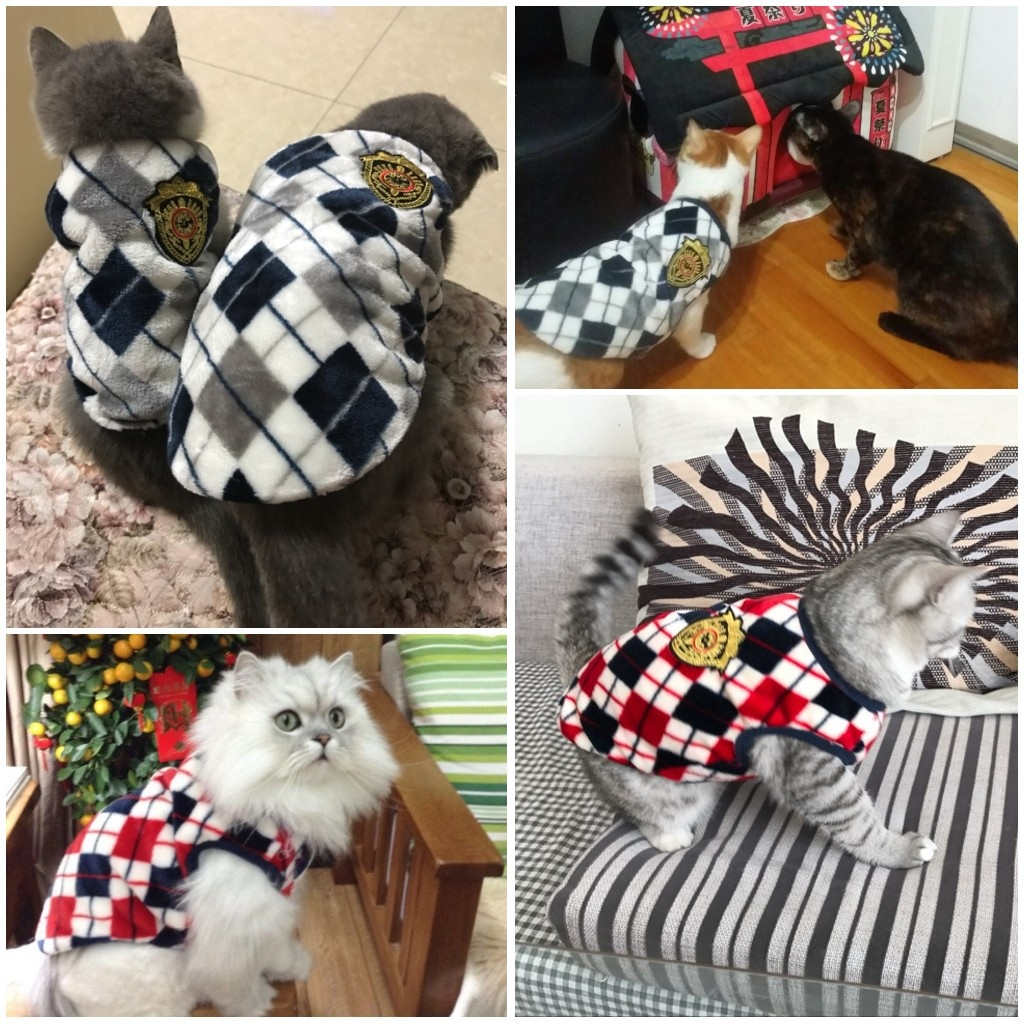 Official Winter Sweater For Cats