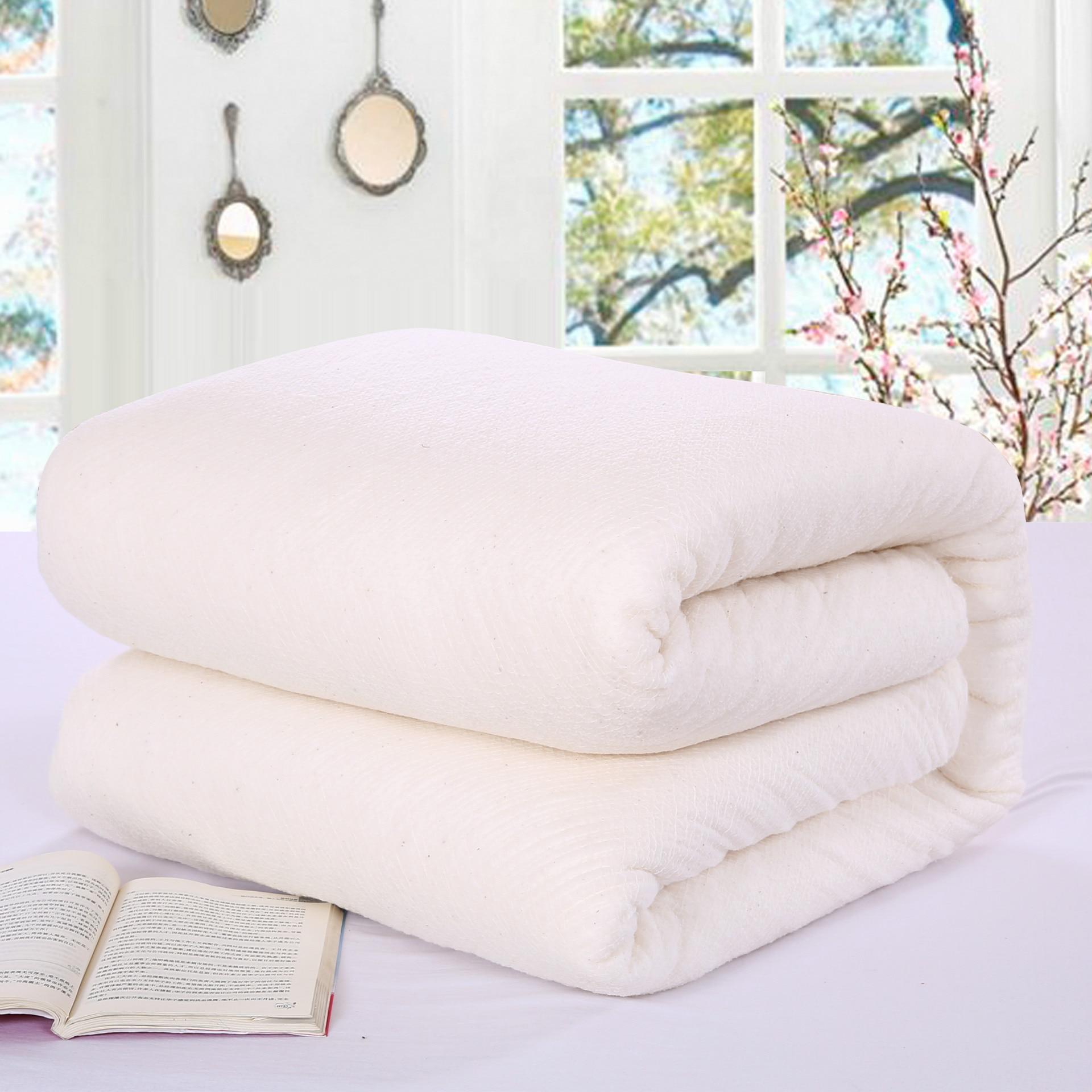 100% Cotton Duvets Quilted Futon Duvet Pure Plant Long Stable Fiber Comforters Non Irritating Hypoallergenic Warm Bedding Core