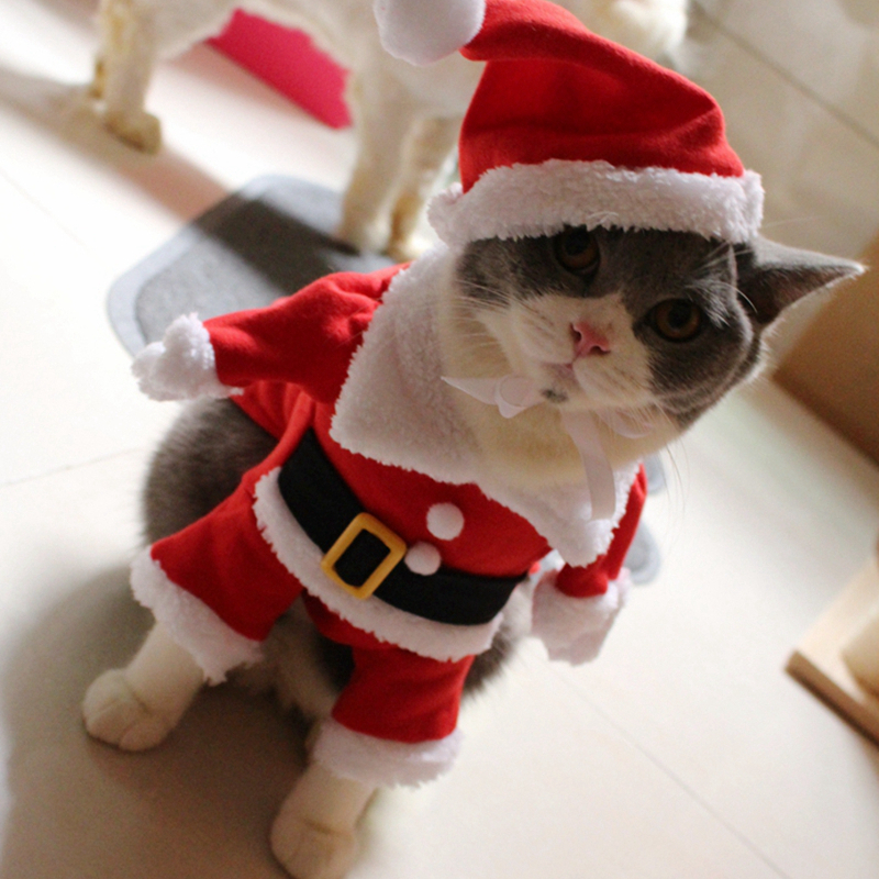 [MPK Cat Costumes] Santa Clause Cat Costume!! Cute Santa! Red Santa - Red Cute Pet Cat Clothing Christmas Party Puppy Cat Clothes Costumes