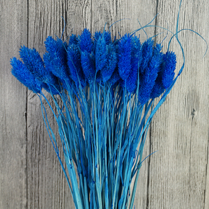 Image 5 - 1 Bunch (1 Bündel = 20 Pcs) natürliche Simulation Pflanzen Getrocknete Blumen Bouquets Für Home Dekoration Wohnzimmer Hochzeit