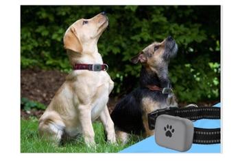 A21P IP67 étanche GPS WIFI Deux Voies Parler Enfants Aîné Animaux Chien Chat SOS Appel En Temps Réel Traqueur Localisateur Anti-perte Moniteur