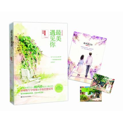 Meeting You in My Beautiful Years (Chinese Edition) written By Gu xi jue for adults Detective love fiction book chinese hsk standard course 5 b textbook with cd chinese edition written by liu chang lu jiang
