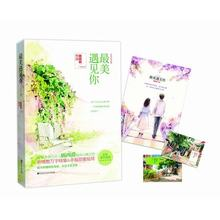 Meeting You in My Beautiful Years (Chinese Edition) written By Gu xi jue for adults Detective love fiction book