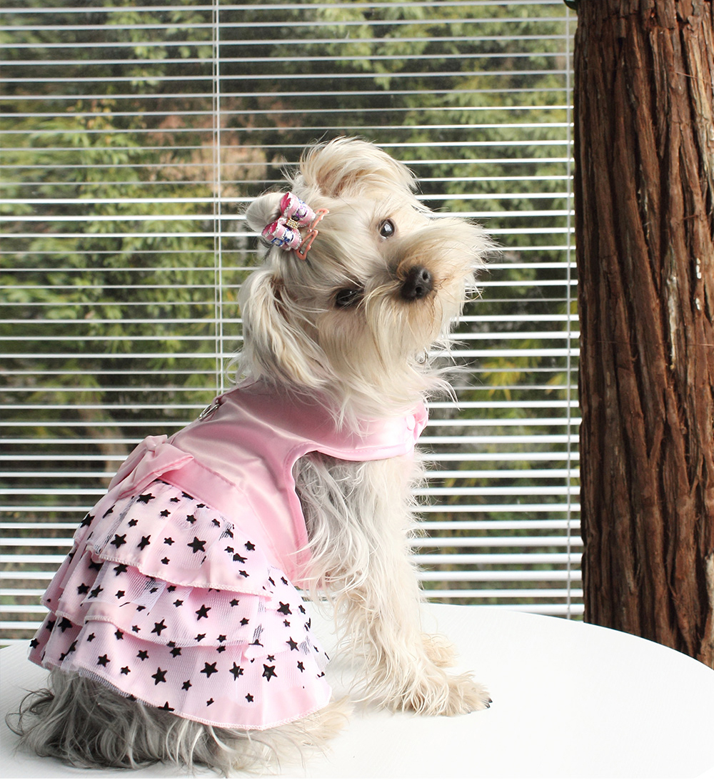 Dogs Princess Dresses