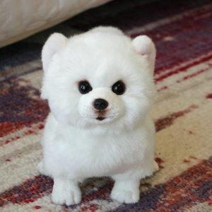 Image 4 - Peluche Pomerania cane bambola cane di Simulazione giocattoli animali di peluche super Realistico giocattolo del cane per gli amanti degli animali di lusso della decorazione della casa da neve bianco