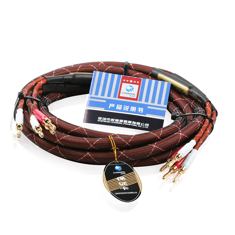 LB-5110 Oxygen-free Copper Audiophile HI-FI Speaker Cable With Banana Plug Connector 4N OFC HIFI Speaker Wires Y