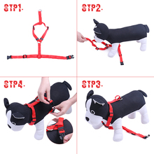 Pet Harness | Nylon Adjustable Safety Restraint