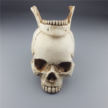2018 Mrzoot Human Skull Replica Resin Model Medical Realistic Size 1:1 Skeleton Collection Handicraft Home Decor For Decoration shunzaor natural large 1 1 skull human skeleton model human bone cranium human skull resin replica medical model lifesize