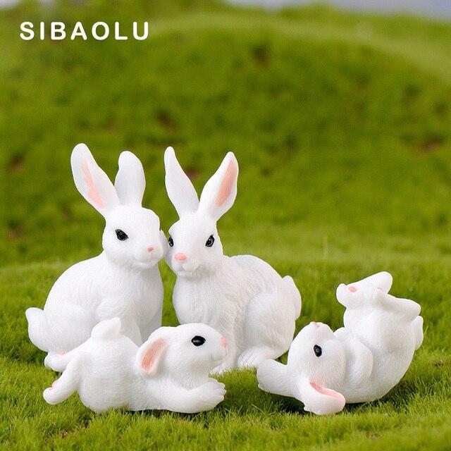 randki z białym królikiem