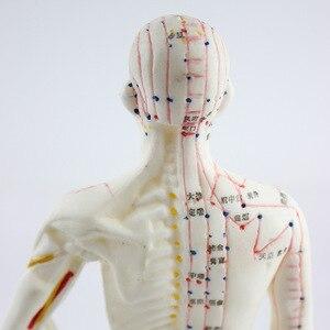 Image 2 - 26 ซม.ทางการแพทย์จีนแพทยศาสตร์Meridiansการฝังเข็มMoxibustionรุ่นการฝังเข็มจุดMannequinฝังเข็มชุด