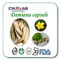 100% Natural Damiana Leaf Extract For Herbal Sex Medicine Damiana Extract Powder Damiana capsule 500mg*100pcs for sale
