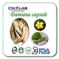 100% Natural Extracto de Hoja De Damiana Para Medicina Del Sexo A Base de Hierbas Damiana Polvo de Extracto de Damiana cápsula 500 mg * 100 unids para venta