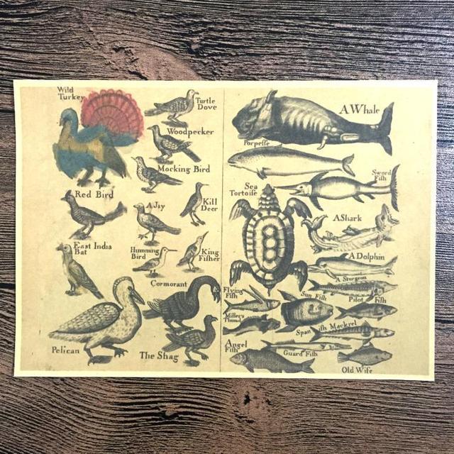 Retro Kraft Fish Old Poster Vintage Wall Art Crafts Sticker Living ...