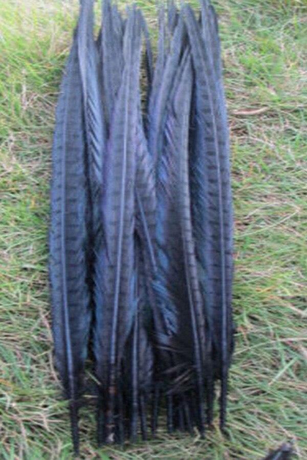 Brezplačna dostava 50 kosov črnega fazana peresa 20-22 palcev / 50 - Umetnost, obrt in šivanje