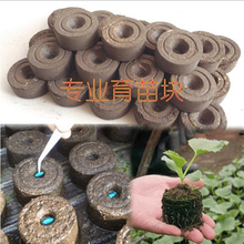 10pcs/lot Compound Fertilizer Seedling Blocks Nutrient Compacted Peat Substrates Seeds Plant Food Garden Tools Accessories