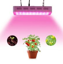 Dimmable grow led 300W light with100x3w Chips Best for All Stages Indoor Hydro/Aeroponic Plant growth lighting
