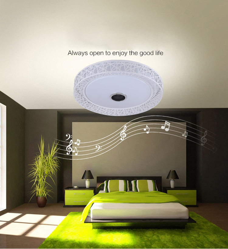 Bird Nest Wireless Bluetooth LED Ceiling Light Music & Multi Colors Changing Smart Remote control Lamp metal & Acrylic lampshade - 6