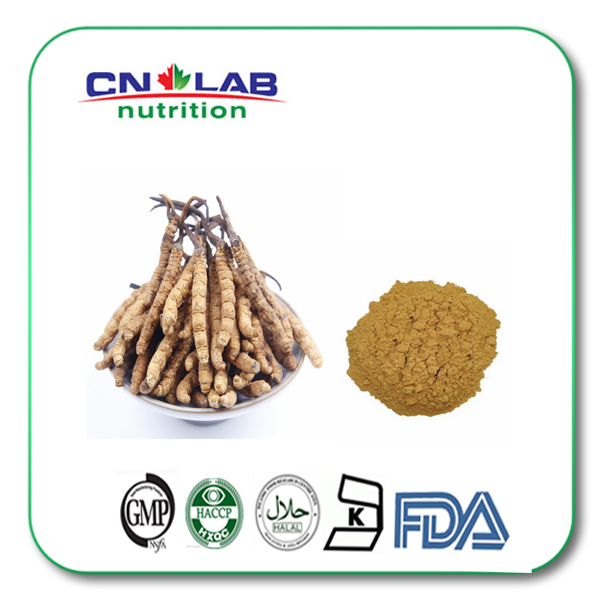 Cordyceps Extract, Cordyceps Sinensis Extracts, Cordyceps Extract powder Polysaccharides 50% 1000g/lot 1000g 10 1 hairyvein agrimony extract