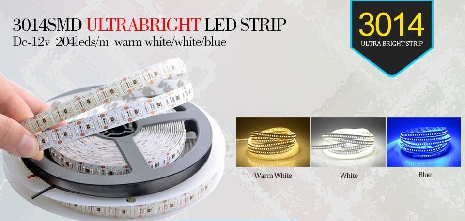 1020LEDs 5M Super Bright Led Strip 3014 SMD DC 12V Warm //Cool White //Blue