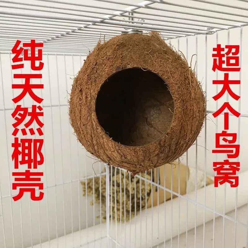 Кокосовая Скорлупа птица насест для попугая клетка Висячие ракушки белка, птица деревянный домик клетка для разведения диких птиц дом игрушки избушка гнездо hose