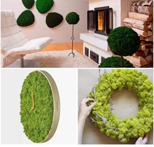 500g	1 pc FAKE Artificial Dried Moss for Flowers Grass Plant Foam Green Plants Decorations Floor Wall Decoration