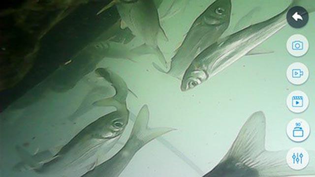Portátil wi fi pesca finder inspeção hd