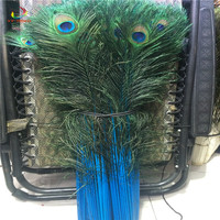 Wholesale 100pcs beautiful Blue peacock feather eye 80 90cm / 32 36 inch decorative celebration stage performance diy feathers